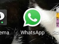 WhatsApp – Tipps und Tricks zum Messenger